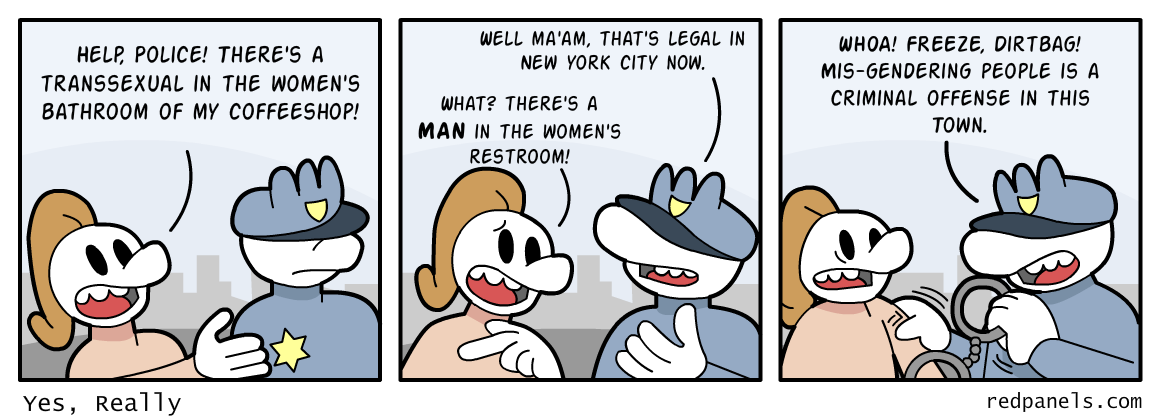 A comic about the New York City misgender law.